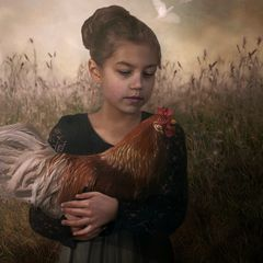 The girl and the rooster